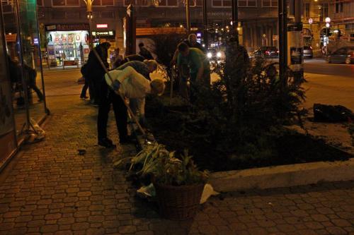 Éjszakai zöldítők Miskolcon